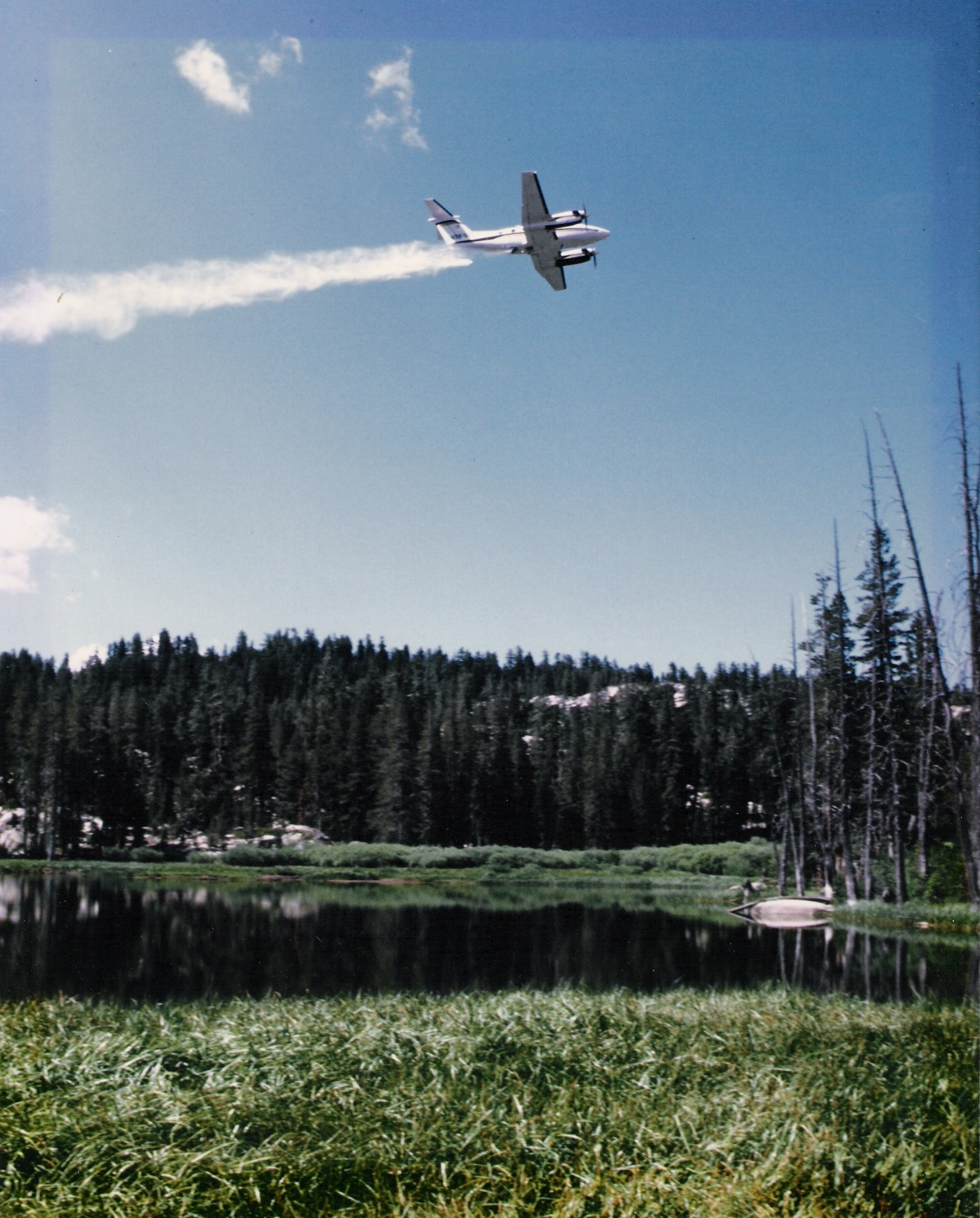 Aerial fish planting in high elevation lakes california for Fish stocking ca