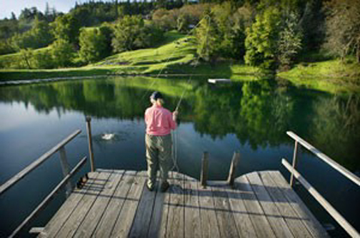 Personal fish farming california outdoors q and a for Pond retailers