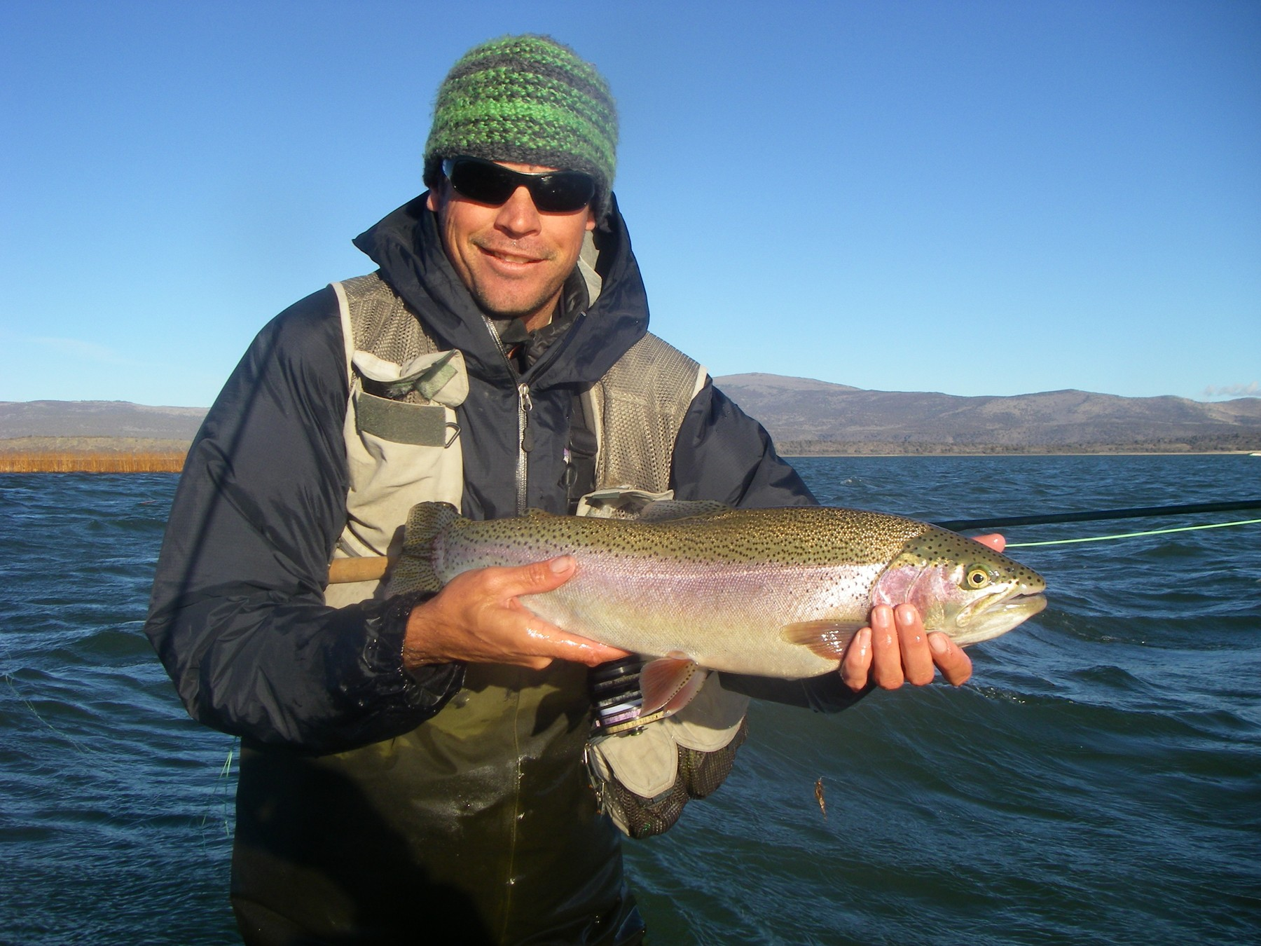 Legal to ship trout and venison out of state california for Freshwater fishing in southern california