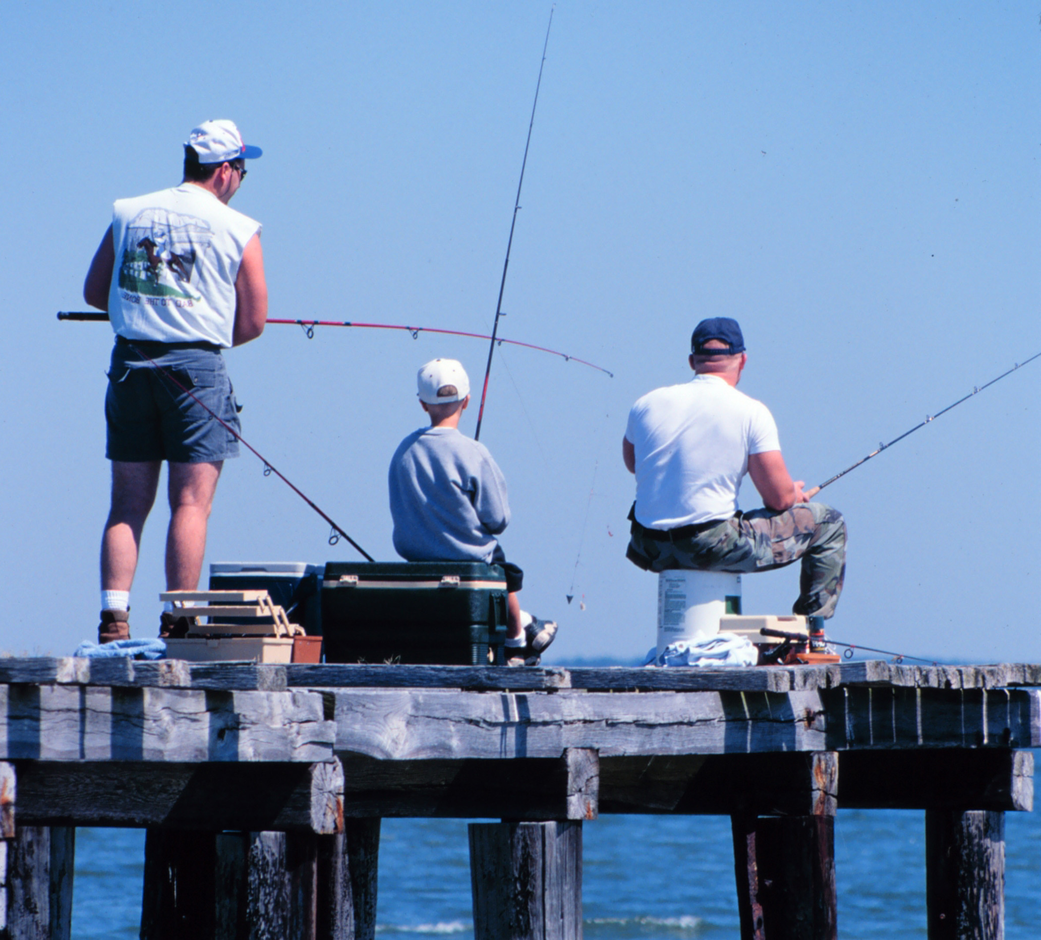 Pier fishing california outdoors q and a for Fishing off a pier