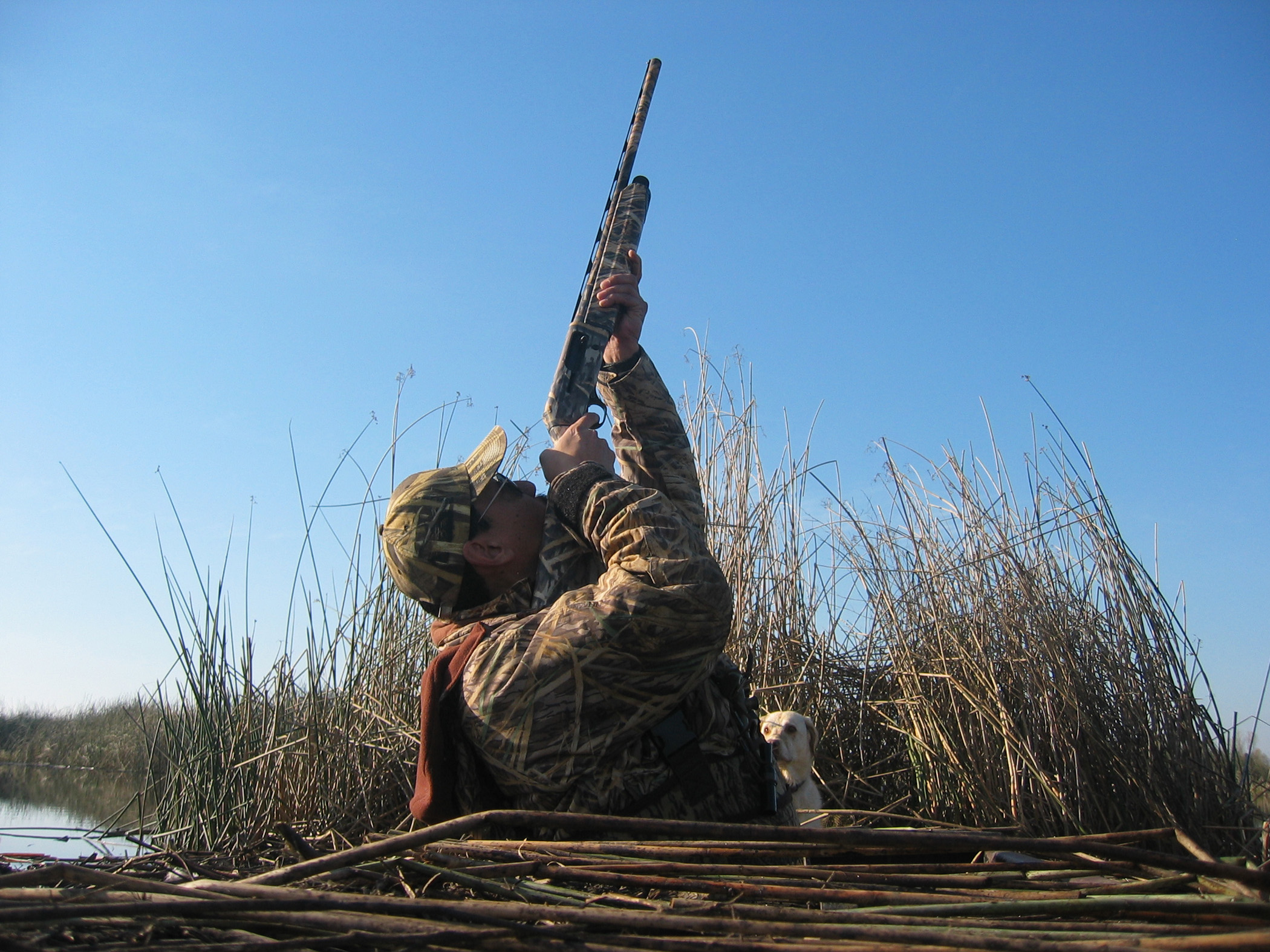 Why shot shell limits in refuges and wildlife areas for California 1 day fishing license