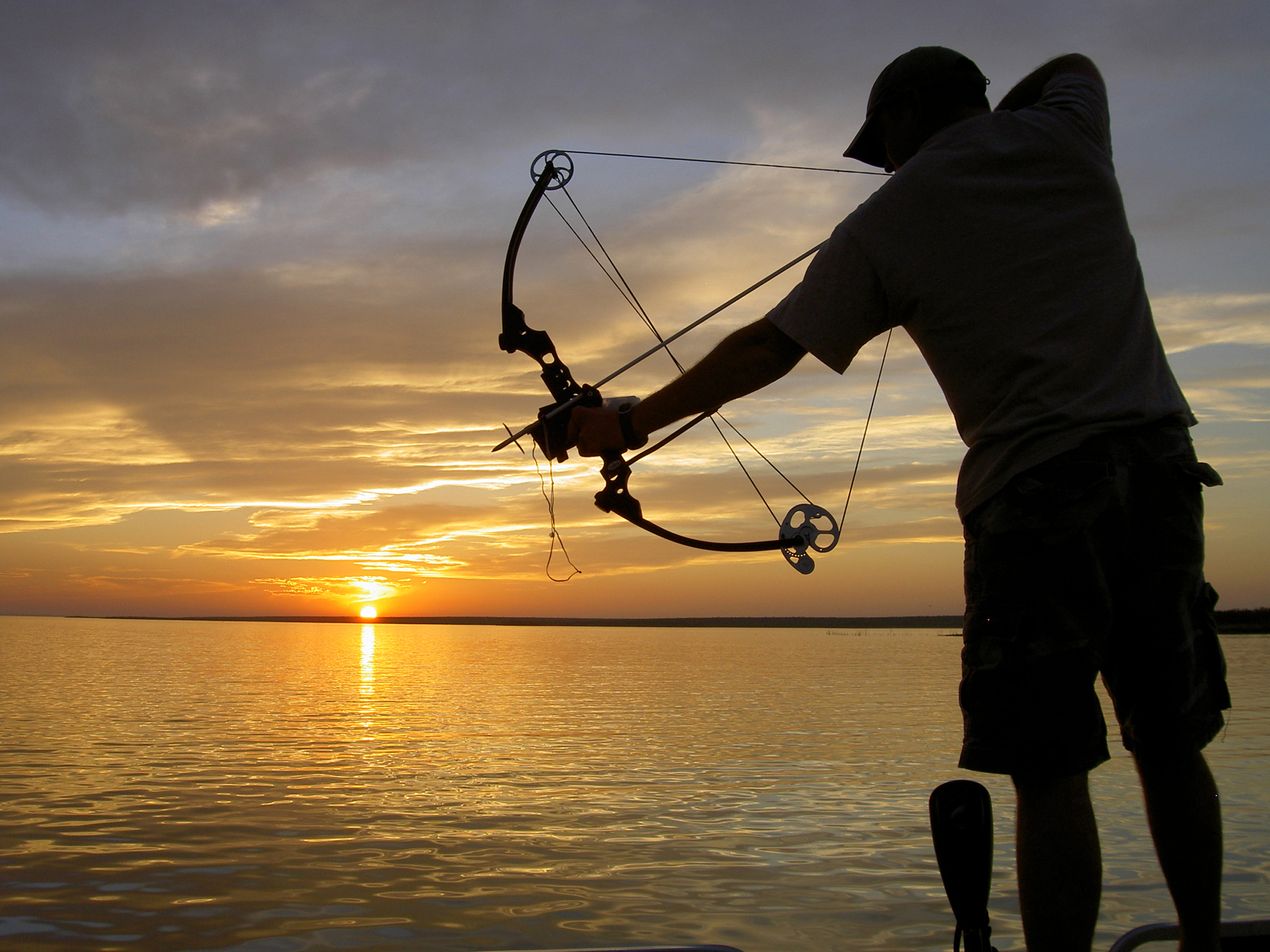 bowfishing for carp hunting or fishing california