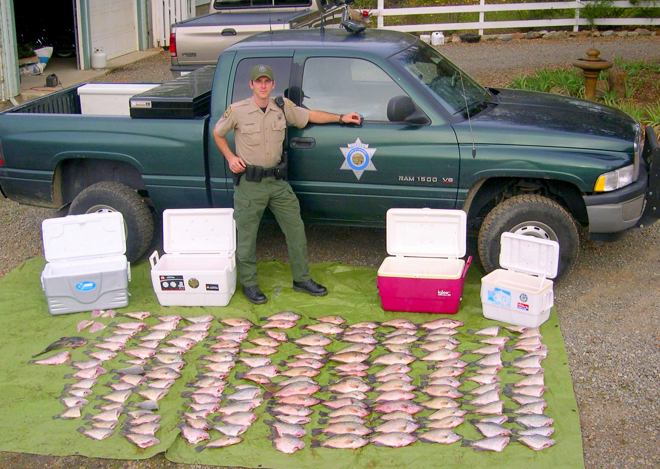 Bag limits possession california outdoors q and a for California fish and game regulations