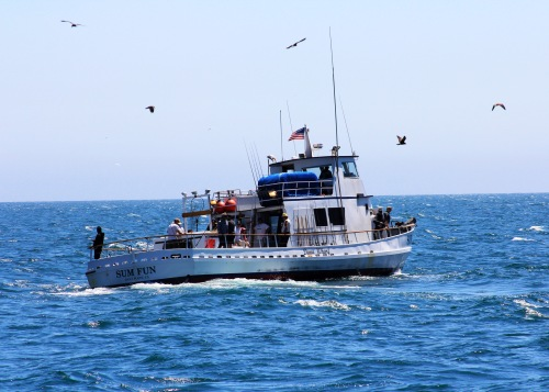 Cooking passengers fish aboard a sport fishing boat for California out of state fishing license