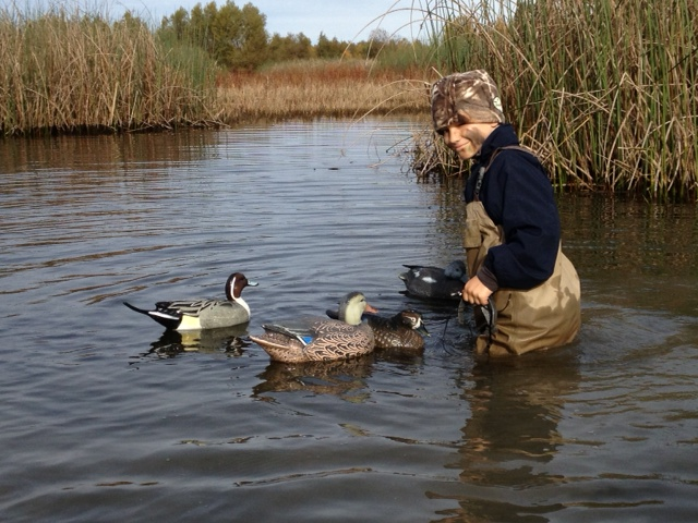 Young boy and duck decoys
